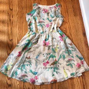 Ted Baker Floral Birds of Paradise dress